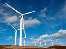 New Energy Nexus, Climate Collective to build clean energy start-up ecosystem in South Asia