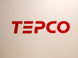 TEPCO Renewable to spend $9-18 billion by 2035 on green power