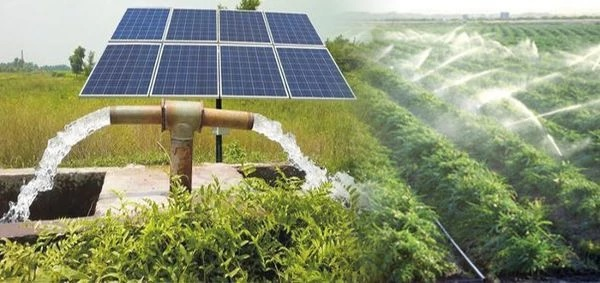 INSTALLATION OF OFF-GRID SOLAR PUMPS (AC) FOR IRRIGATION IN AGRICULTURE SECTOR (PUNJAB)