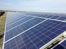 India Looking To Strengthen Domestic Solar Manufacturing, Reduce Dependence On China