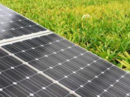 India's ReNew Power plans 2-GW solar PV factory – report