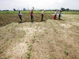 Off-grid areas in Myanmar to enjoy solar power