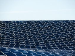 Texan utility tenders 900 MW of solar, 50 MW of storage