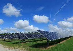 ALDI Australia wants 100% renewable power for stores, warehouses next year