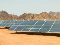 Egypt cancels tender to establish 200 MW solar power plant in west Nile