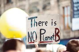 Norwegian Pension fund drops Exxon, Chevron, BASF over climate lobbying