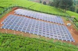 Redavia deploys first solar farm in Kenya at Menengai Farmers