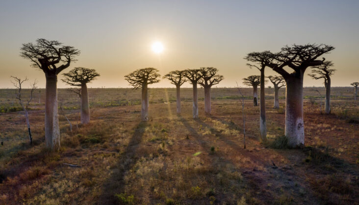 Solar energy is Madagascar's key to boosting electricity in rural areas