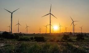 Emirati consortium studies implementing wind energy project in Egypt