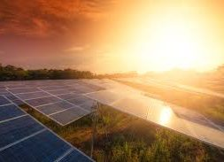 Australia's largest solar farm reaches major milestone