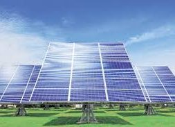 Fund crunch in installation of solar irrigation pumps is a sad saga