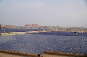 Rajasthan Plant1