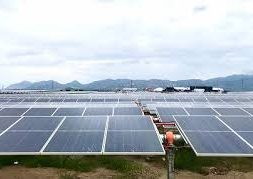 Vietnam's Ha Do Group inaugurates 50-MWp solar farm in Ninh Thuan