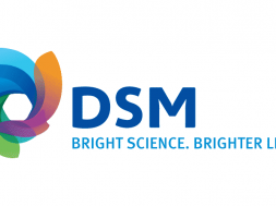 DSM Advanced Solar launches new 'all purpose' Endurance backsheet