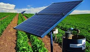 Egyptian farmers to access finance for solar irrigation pumps