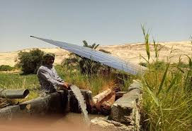 IFC, Agricultural Bank of Egypt partner to promote farmers' switch to solar irrigation systems