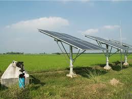 EGYPT: IFC and EBA to finance solar photovoltaic irrigation