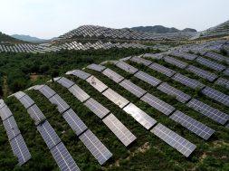 Meghalaya Issues Tender for 50 MW Off-Grid SPV Power Plants under RESCO Model