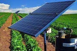 New partnership to help Egyptian farmers buy solar irrigation systems