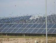 ReneSola wraps up purchase of 200 MW of US solar, energy storage