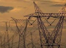Resume REC trade soon, trading pause to impact discoms' ability to meet RPO targets