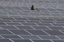 Desert heat will help keep lights on in Dubai after sunset