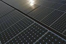 NEFIN and Alliance Joined Hands to Generate Solar Power Offsetting 39 tonnes of CO2 Annually