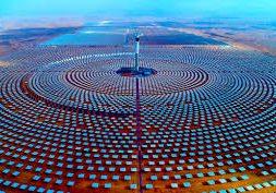 Saudi Government Raises Ownership to Half of Global Solar Leader ACWA Power