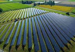 UAE's Ras Al Khaimah picks 20 companies to move ahead with first solar tender