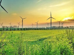 Wind energy powers more than half of UK electricity for first time
