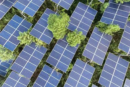 Total targets 100 GW of renewable energy capacity by 2030