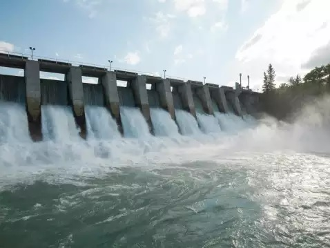 Every hydroelectric project under obligation to release minimum water downstream: NGT