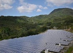 Major firms urge Japan to bolster 2030 renewable energy goal