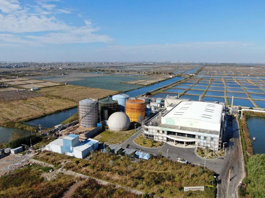 China's Zhejiang sees clean energy development boom