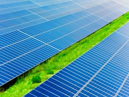 Entire 300 MW solar ready by September this year- Singareni