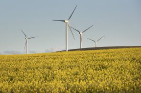 SAFRICA-AGRICULTURE-ENVIRONMENT-WIND-TURBINES
