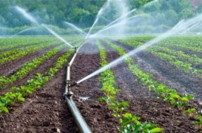 Sprinkler-Micro-Irrigation-Systems-for-farm-1280×720
