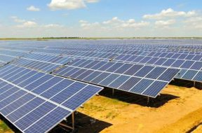 Sterling and Wilson Solar Q3 profit tanks 55% to Rs 22.45 crore