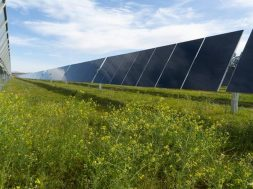 First Solar nabs 2.4 GW of Series 6 module deals from Intersect Power