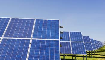 Krannich Solar opens new branch in Brisbane, Australia