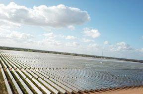 BayWa Oz solar farm hits first power milestone