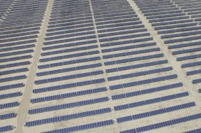 Renewables sector shows 'resilience' in 2020 with strong solar installs across Asia – IRENA