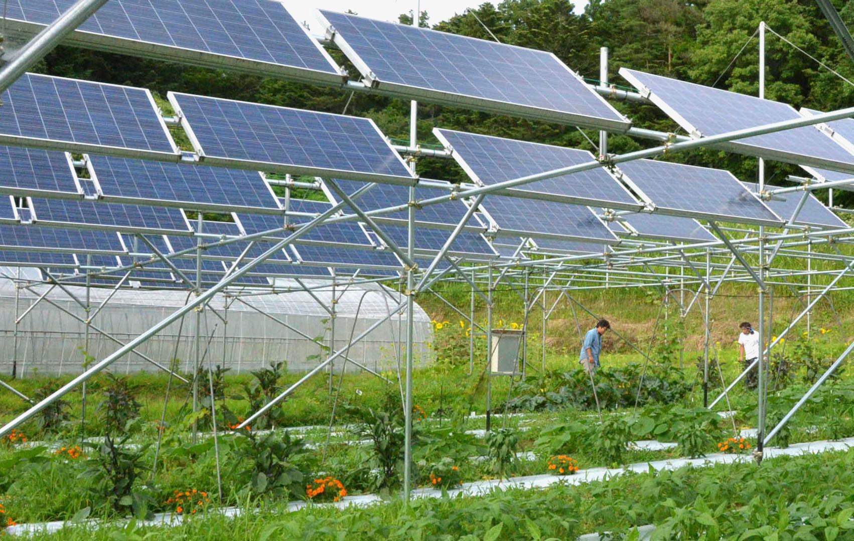 Solar Financier Loanpal Plans IPO as Soon as This Year