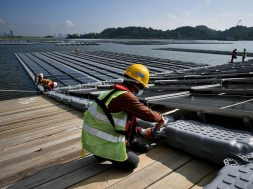 Bright outlook for largest solar farm here