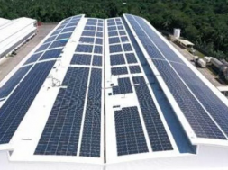 Coca-Cola Philippines to pursue multi-phased solar panel project