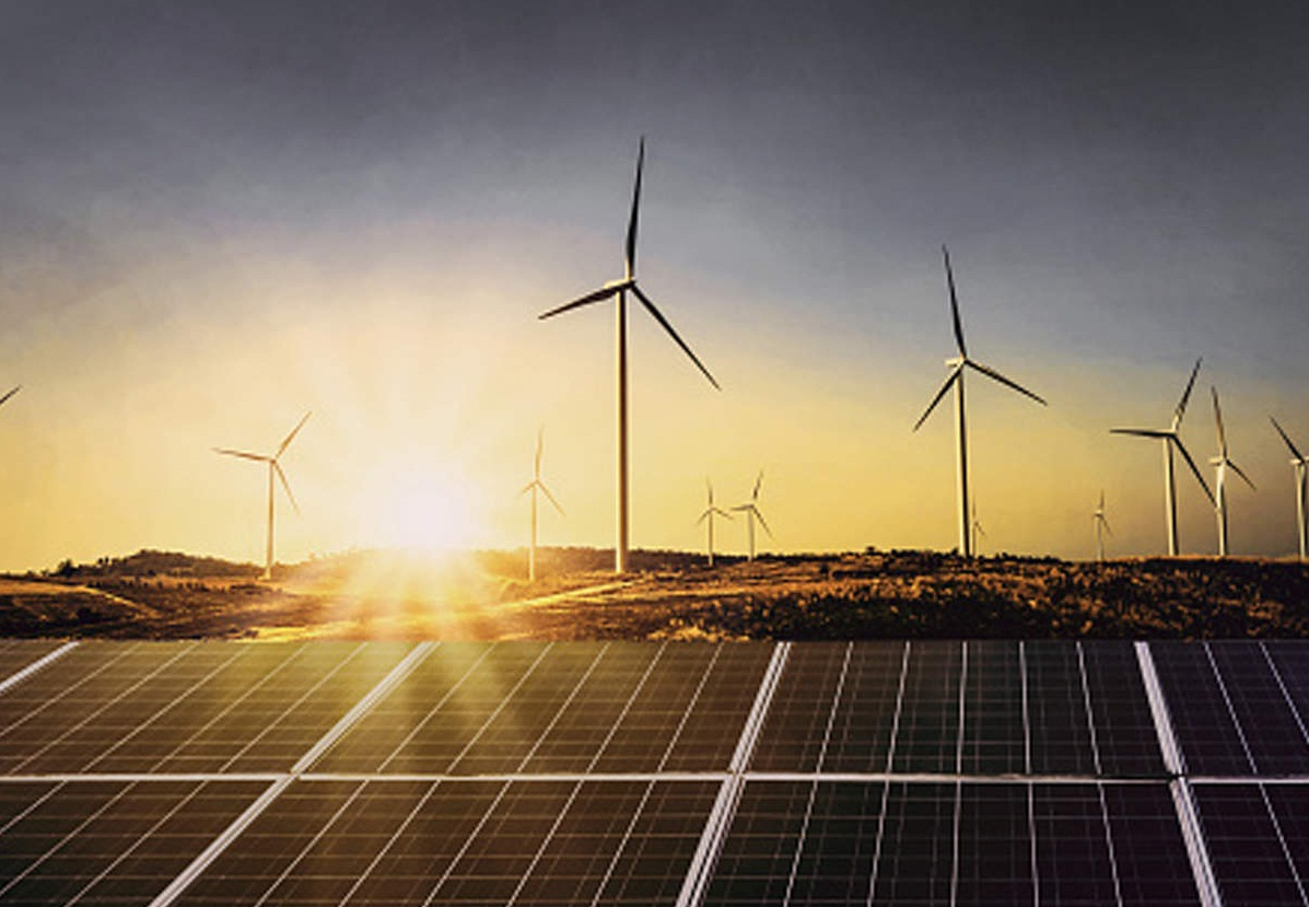 Orient Green Power Company Posts Consolidated Loss of Rs 42.64 Cr in March Quarter
