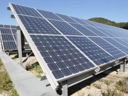 ReNew Power to develop solar component production facility in Gujarat