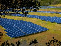 Etrion arranges sale of 9.5-MWp solar farm in Japan