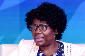 Namibia can export electricity to southern, eastern African states official