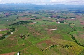 Solar Philippines building 500MW solar farm on old ranch in Nueva Ecija